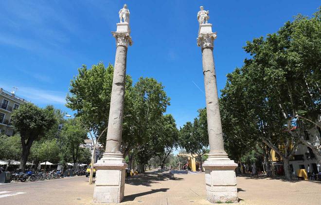 Sevilla Alamenda