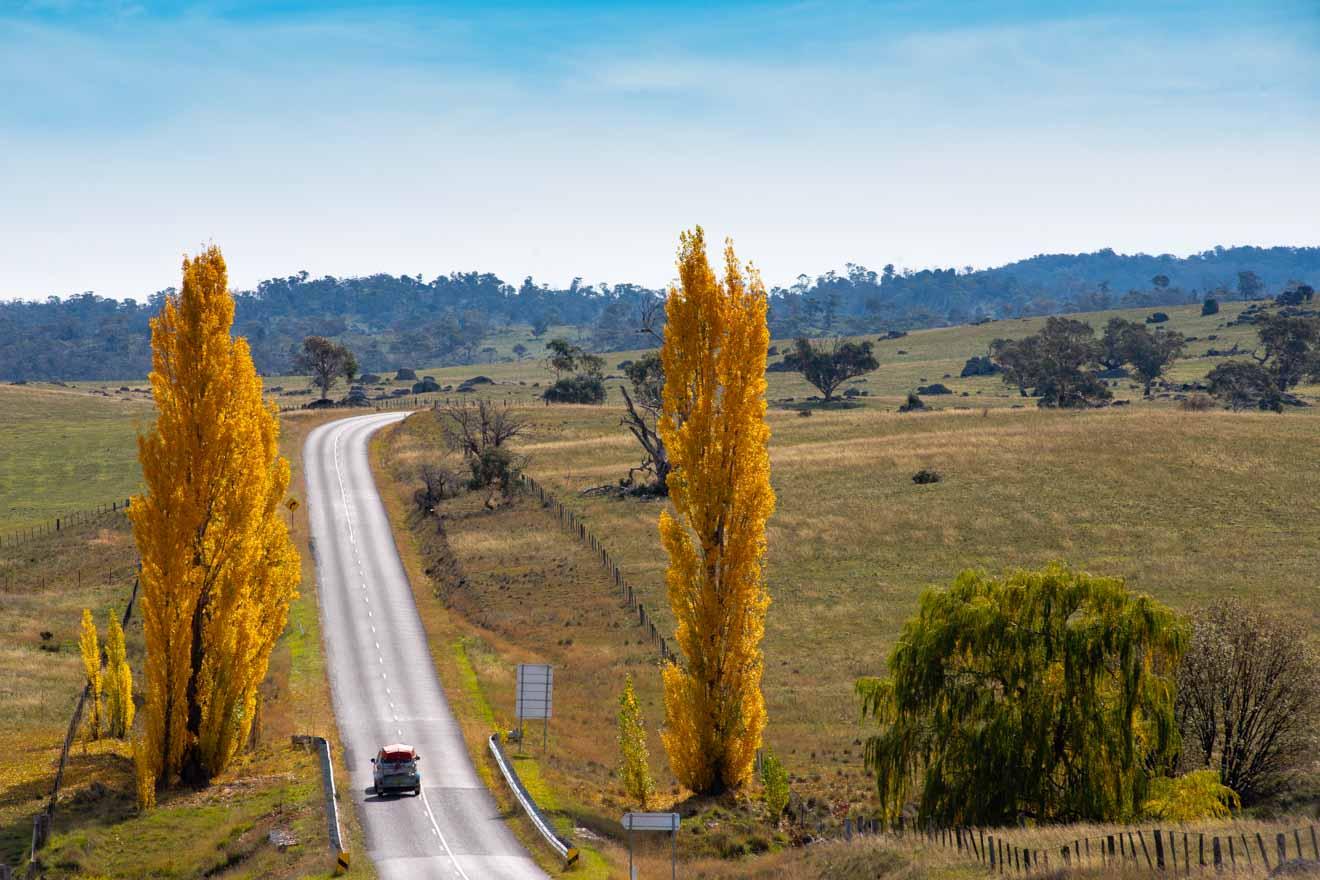 carretera en la región de las montañas nevadas de NSW cómo llegar