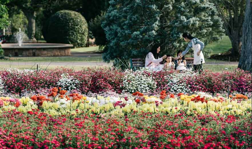 jardines botánicos en hervey bay