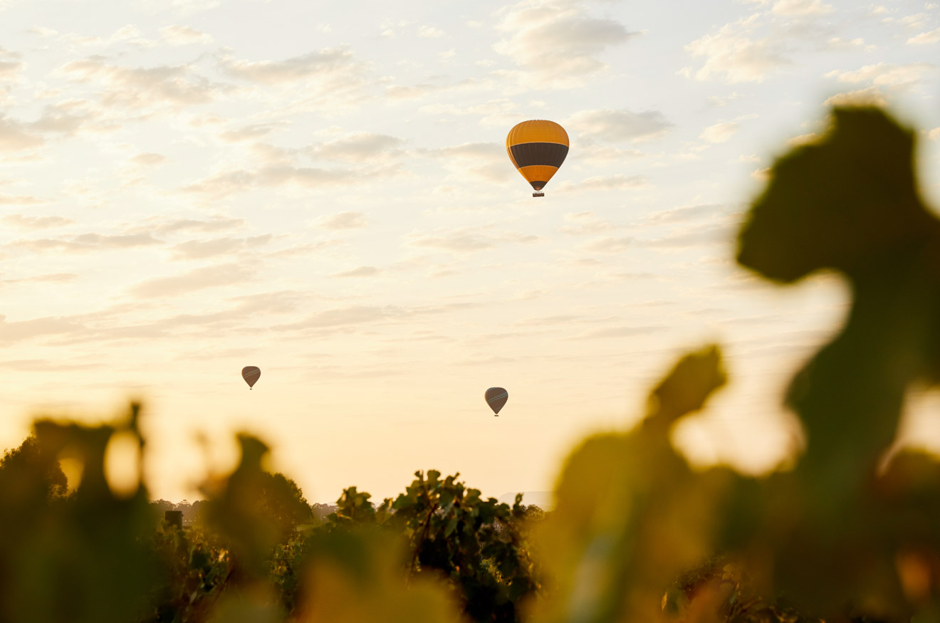 Hanging Tree Wines, Pokolbin, Hunter Valley air balloon