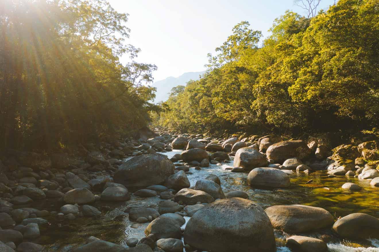 actividades del parque nacional daintree en port douglas