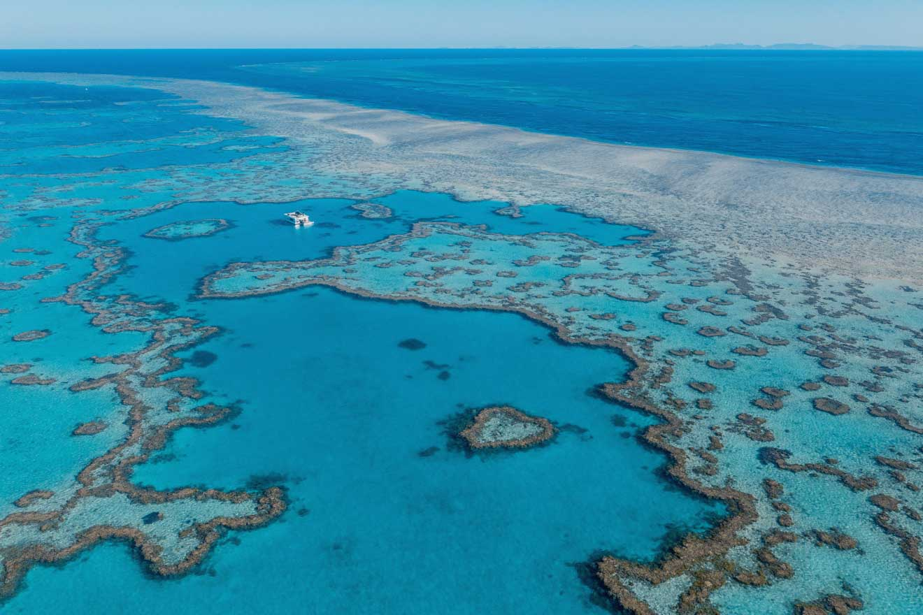 gran barrera de coral puerto de douglas