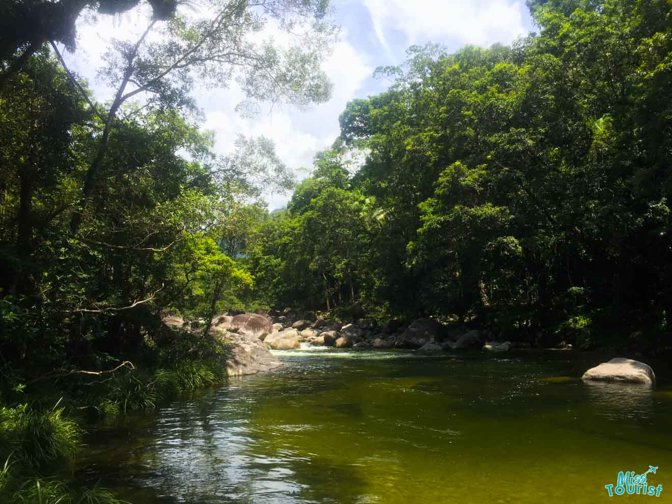 sitio de baño salvaje cosas que hacer en Port Douglas