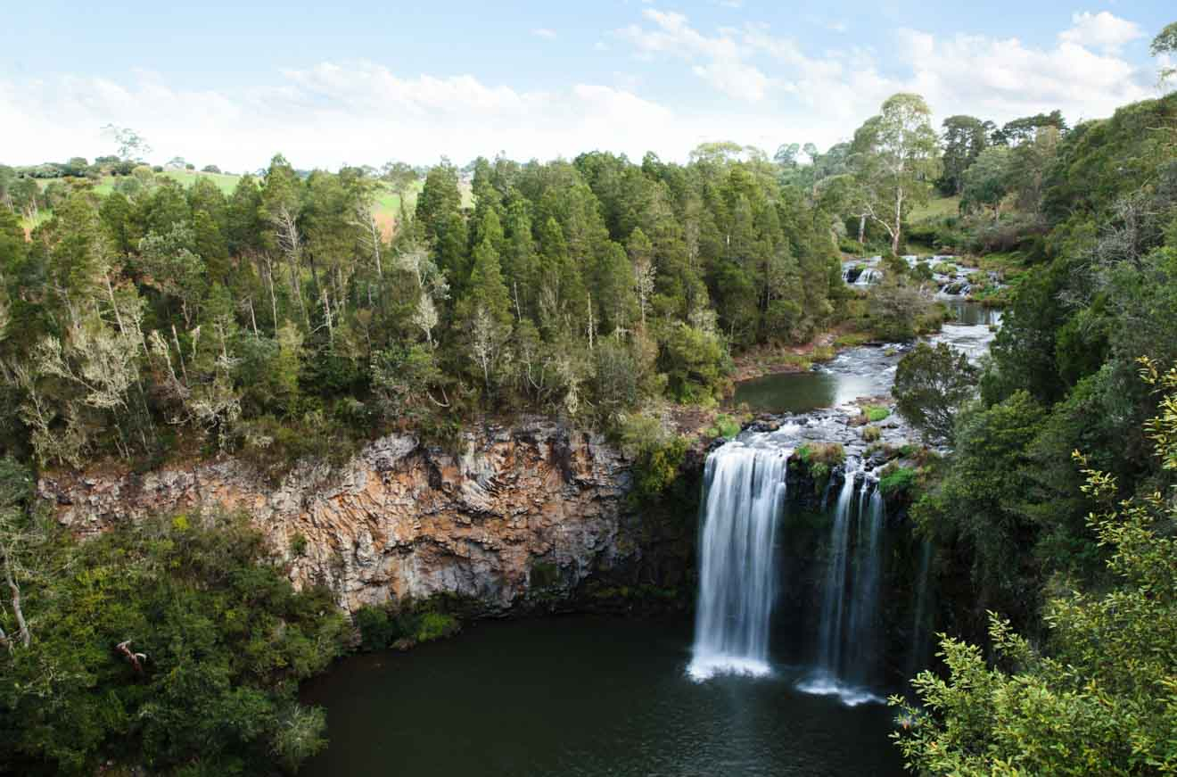 Dangar Falls, Dorrigo ubicado en la costa norte. Coffs Harbour Dangar Falls