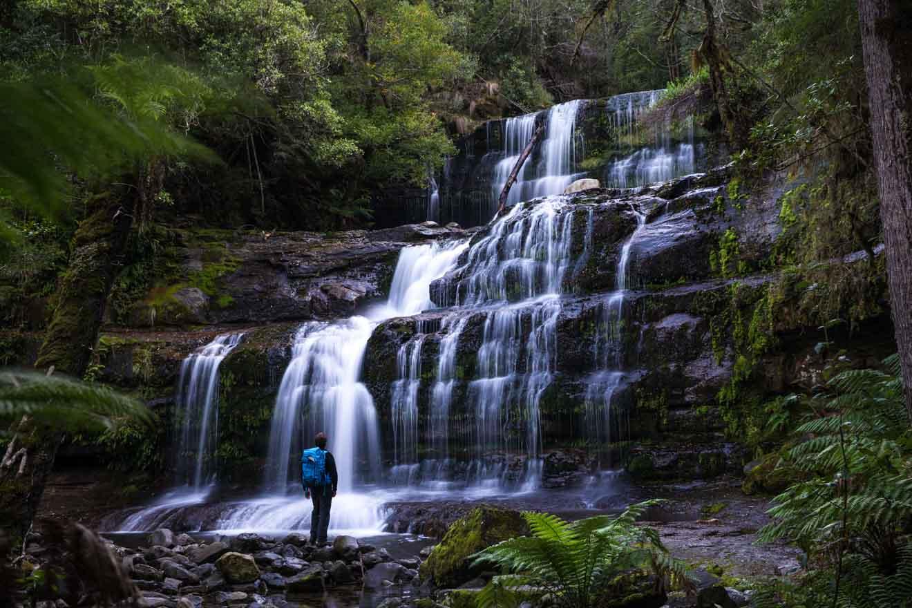 Cascada Relajación Mount Field National Park Tasmania