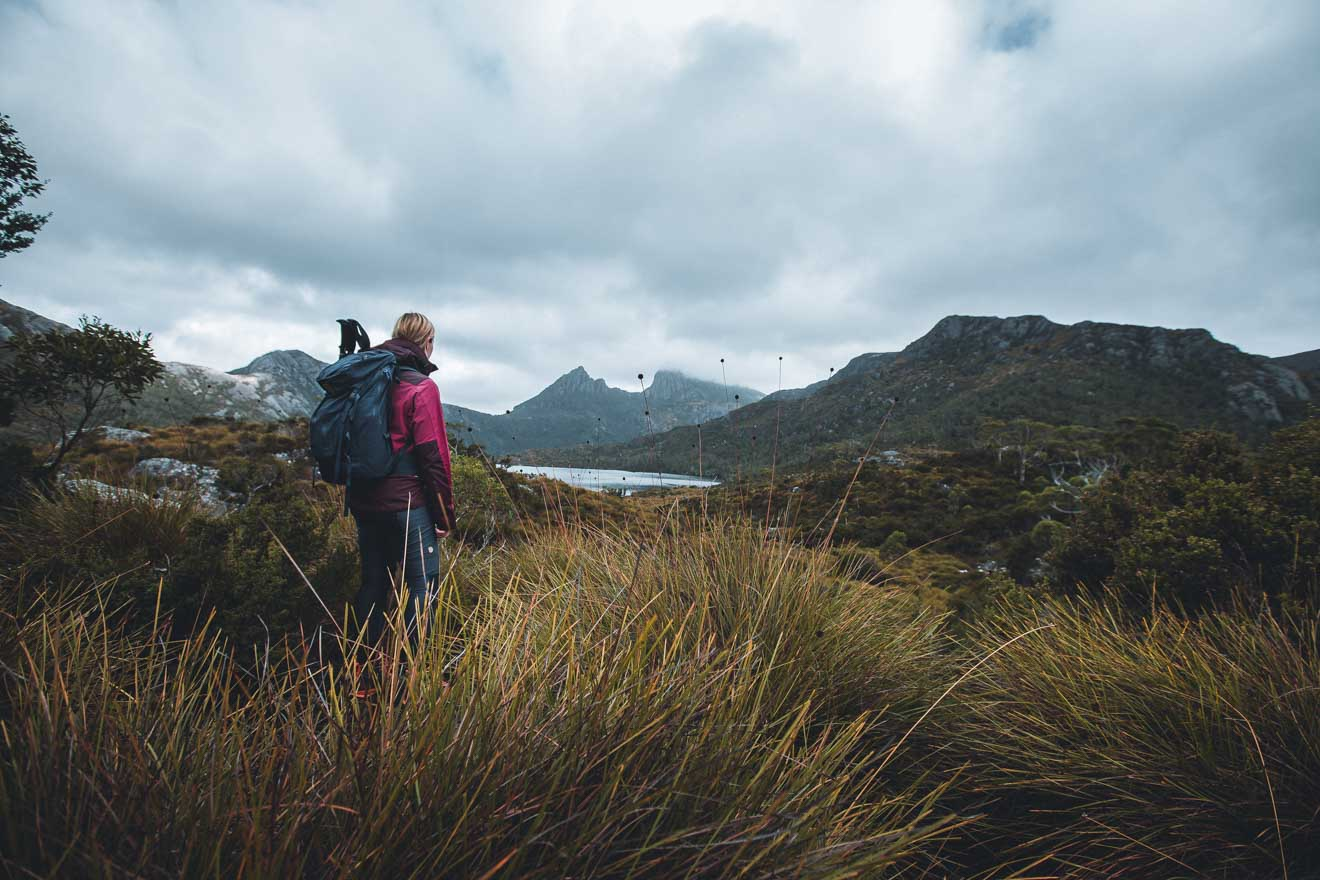 Cradle Mountain y Dove Lake Tour en Tasmania