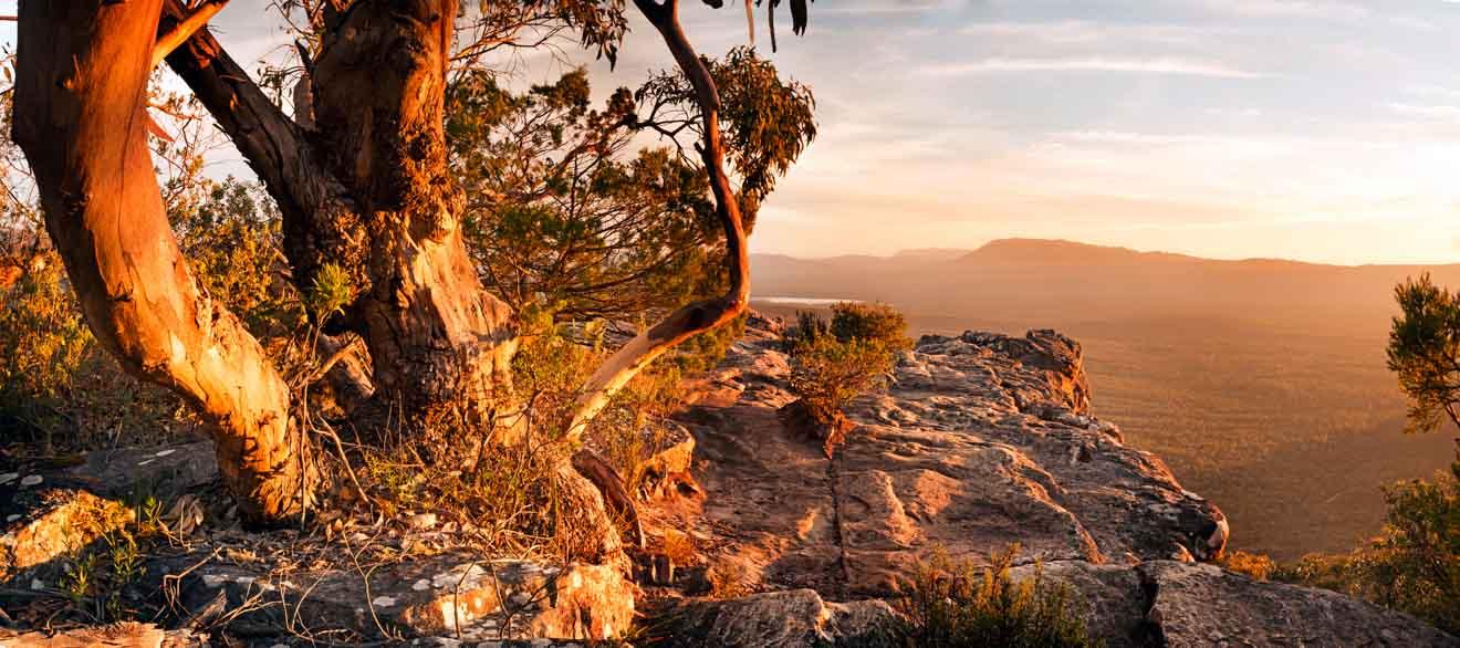 Caminata por los Grampianos - Paisaje australiano de Bush Parque nacional de los Grampianos