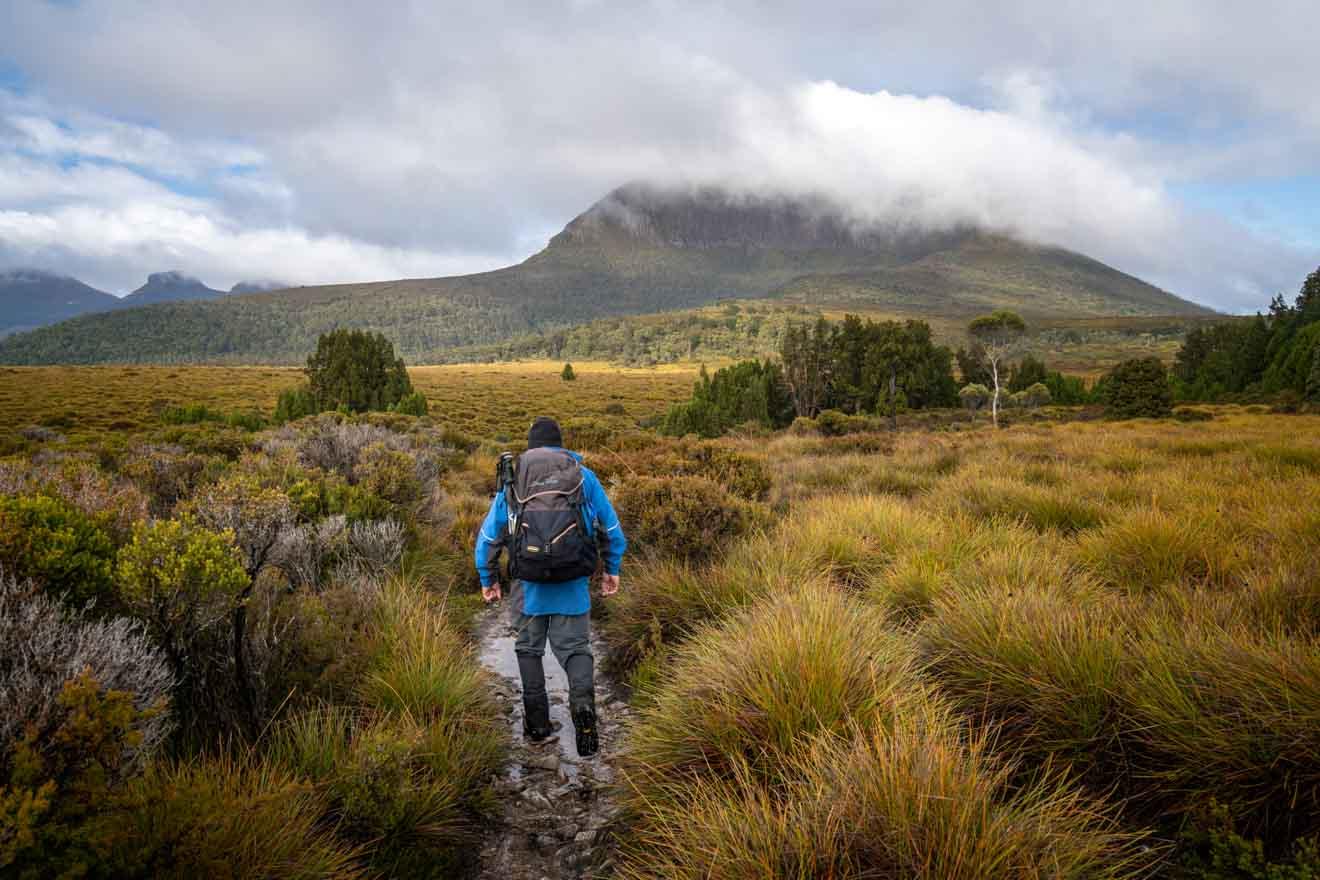 Camina hasta el monte Pelion West, Overland Track: un recorrido autoguiado