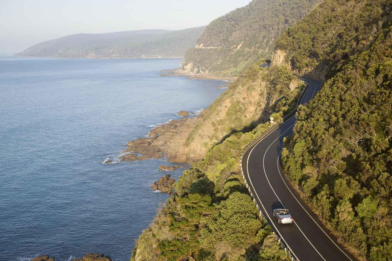 Cosas que hacer en great great ocean road - excelentes atracciones en great ocean road