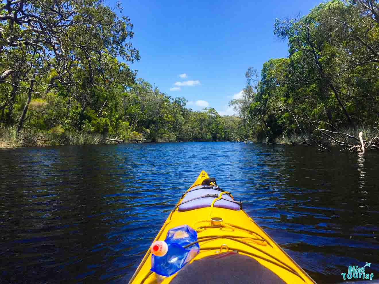Cosas que hacer en kayak en Sunshine Coast
