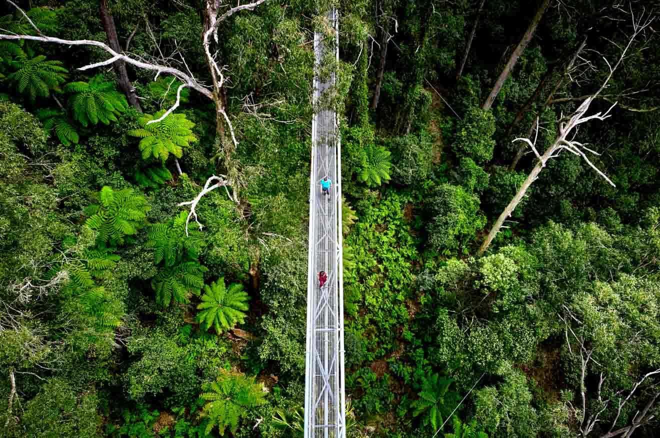cosas gratis que hacer en vacaciones escolares wollongong - carretera Qué hacer en Wollongong