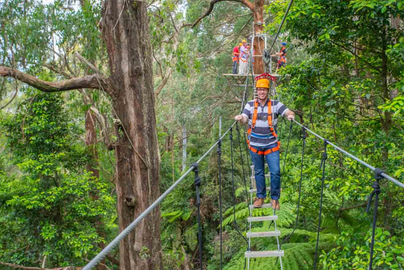 experiencias wollongong - región de Illawarra Cosas que hacer en Wollongong