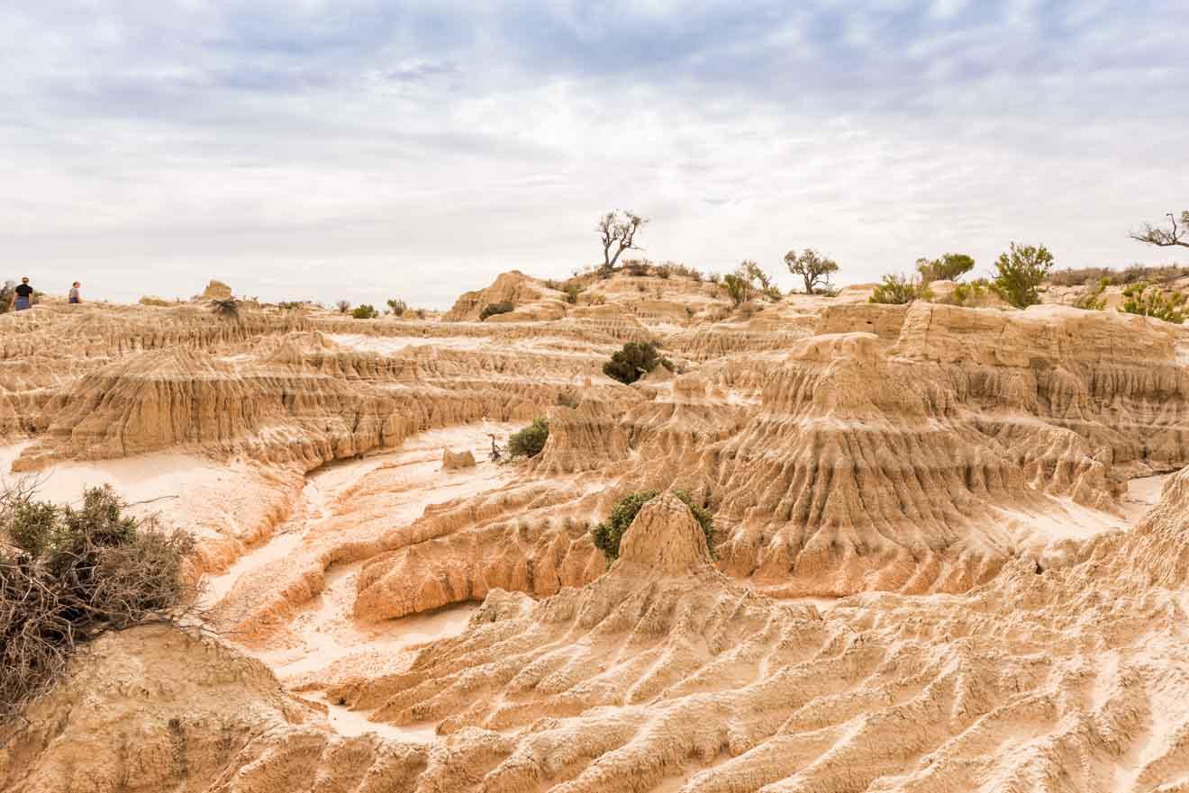 Información sobre Mildura - Mungo National Park Qué hacer en Mildura