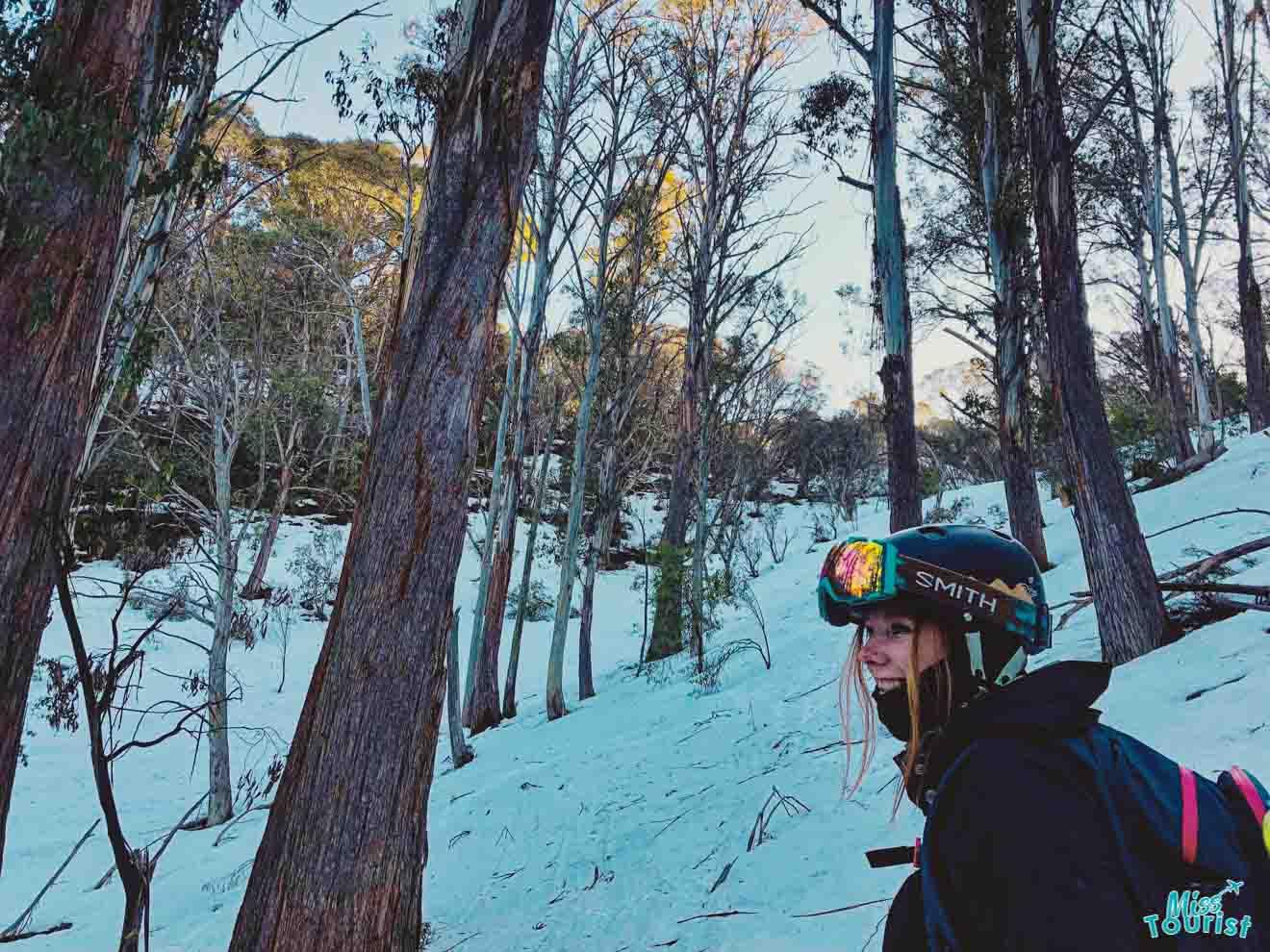 Tabla de snowboard Mount Hotham - esquí de árbol Mt Buller o Mt Hotham