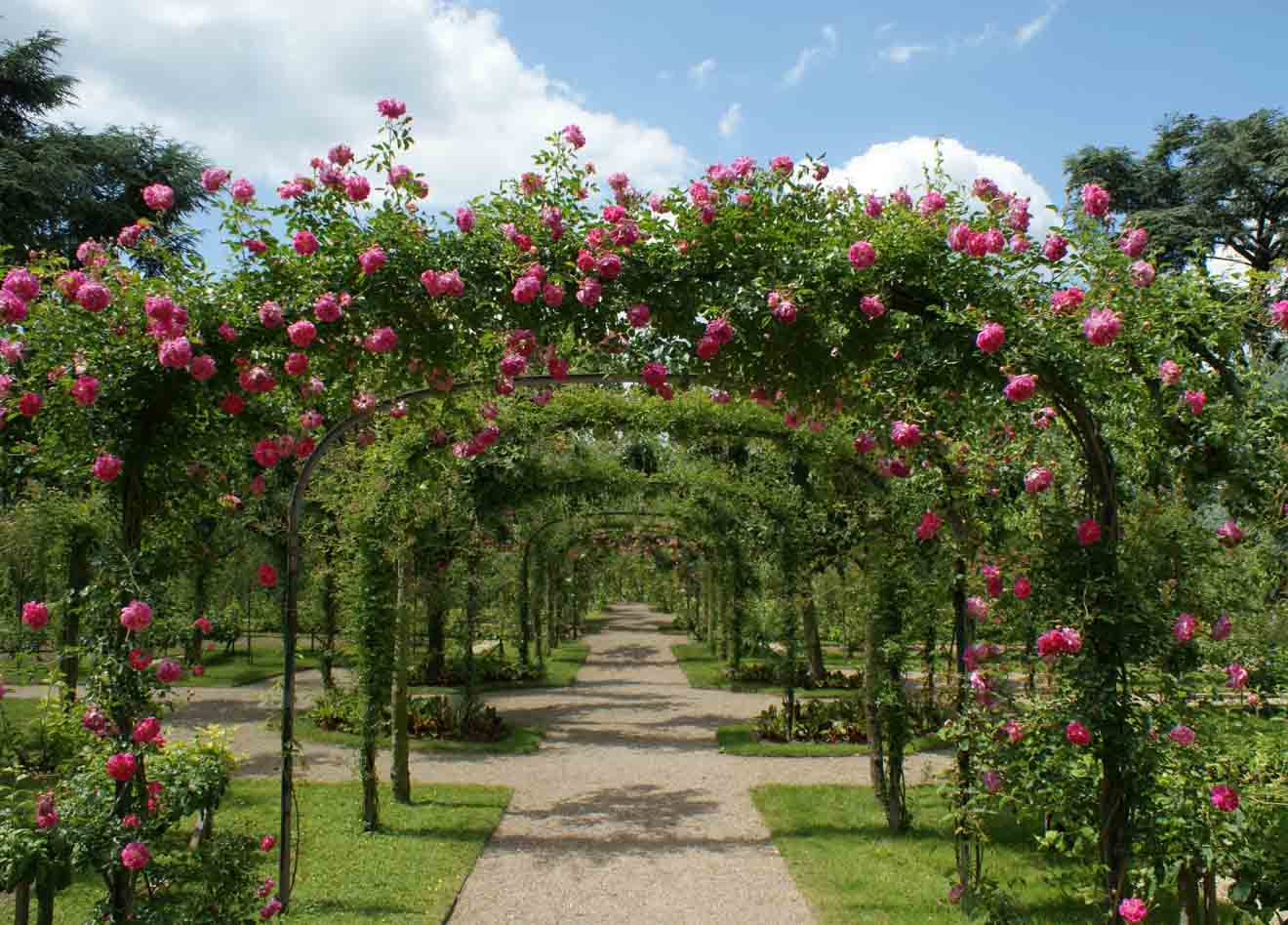 cosas que hacer en geelong en pascua - gazebo del jardín para hacer en geelong