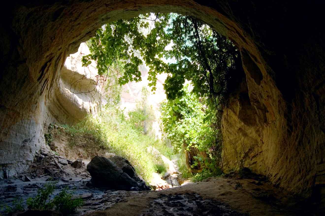 Cosas que ver y hacer - cueva Cosas que hacer en Mount Gambier
