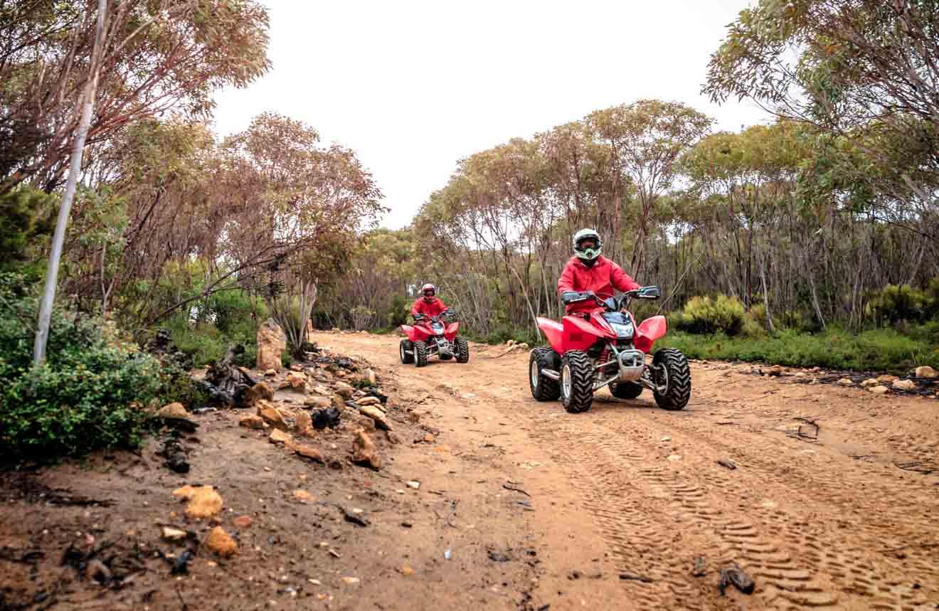 Visite el sur de Australia: actividades al aire libre para hacer en la isla Canguro