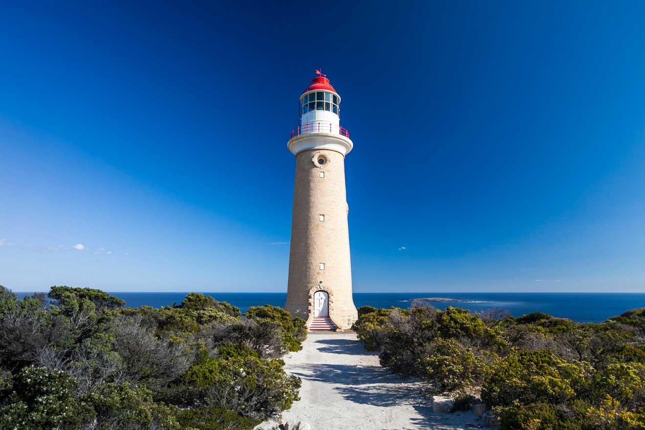 Actividades turísticas mejor valoradas en Isla Canguro- Faro Qué hacer en Isla Canguro