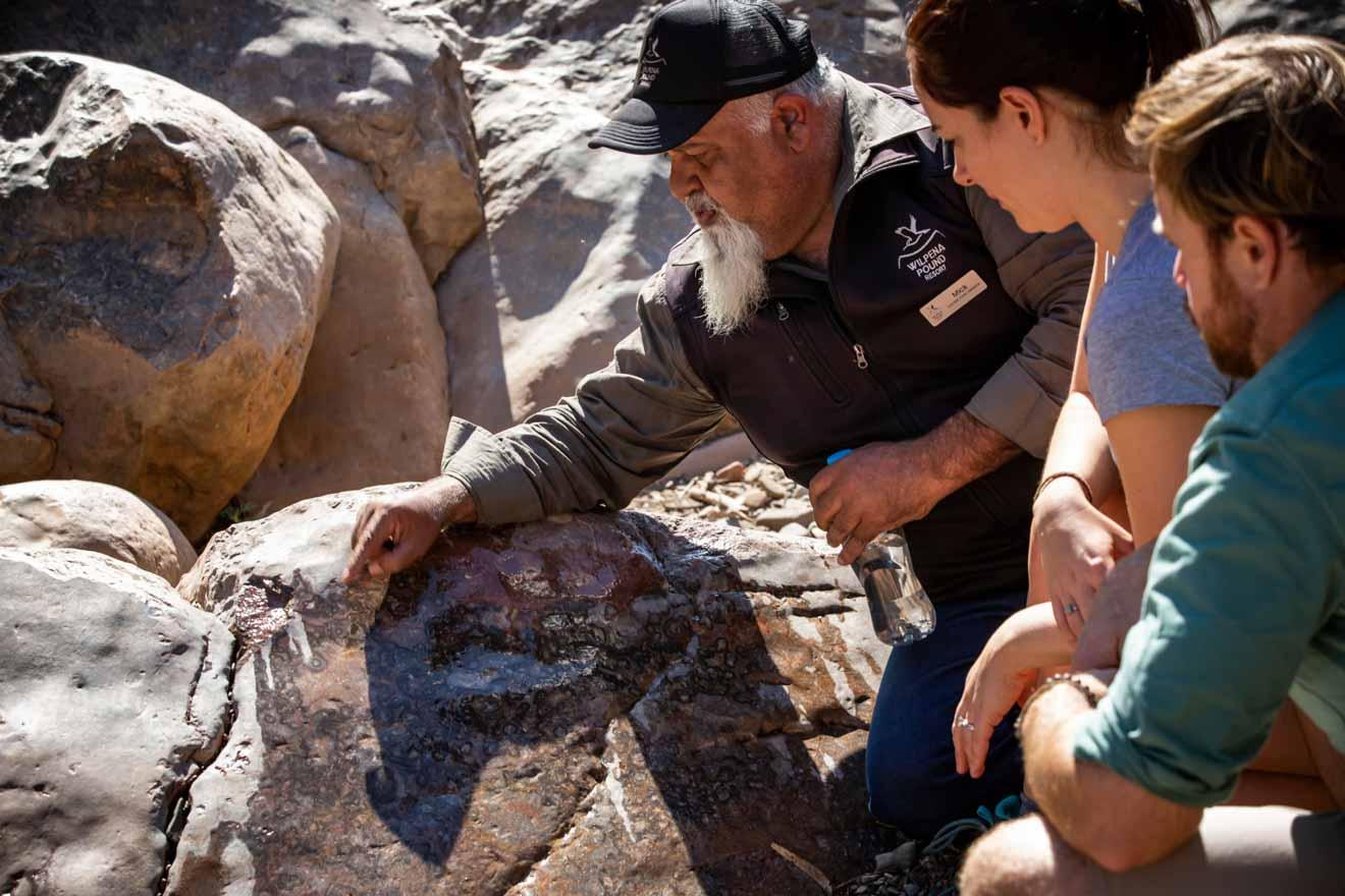 Itinerario de visita guiada en Wilpena Pound Resort - Brachina Gorge Fossils