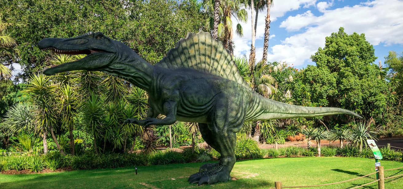 Visita a los animales en el zoológico de Perth
