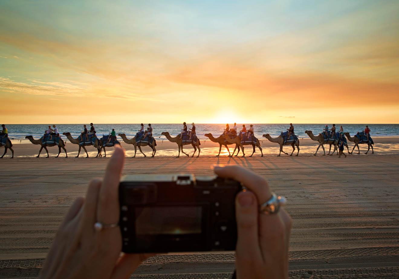 Camellos al atardecer en Broome