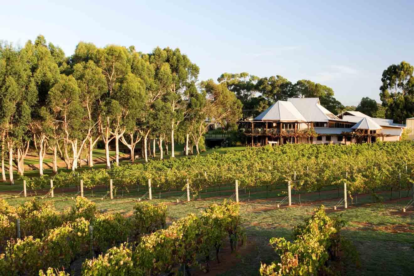 Perth en Australia Occidental - Vasse Vignoble Felix Margaret River Bodegas
