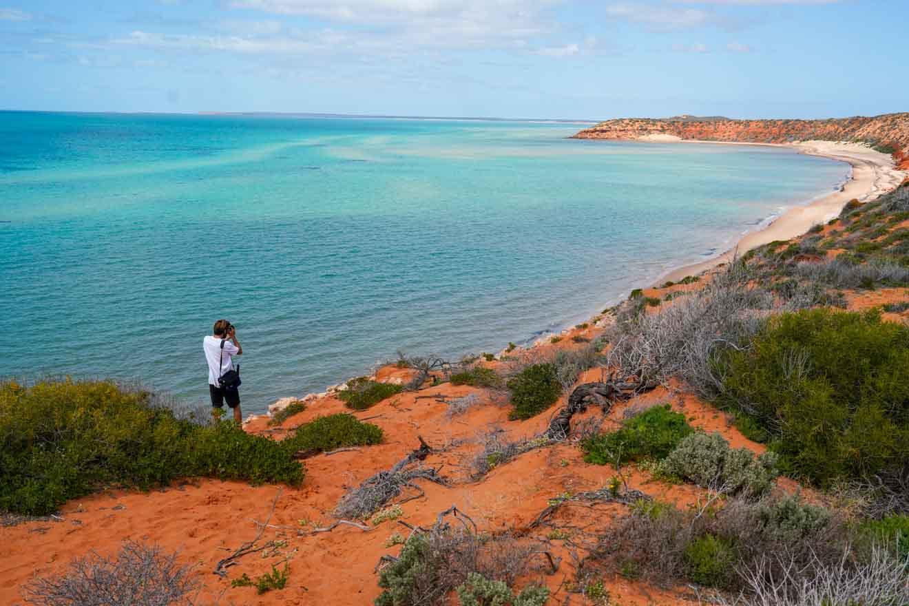 Cosas que hacer en Shark Bay y Rac Monkey Mia