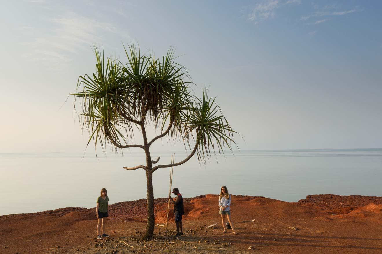 Palm Arnhem Land permite visitar