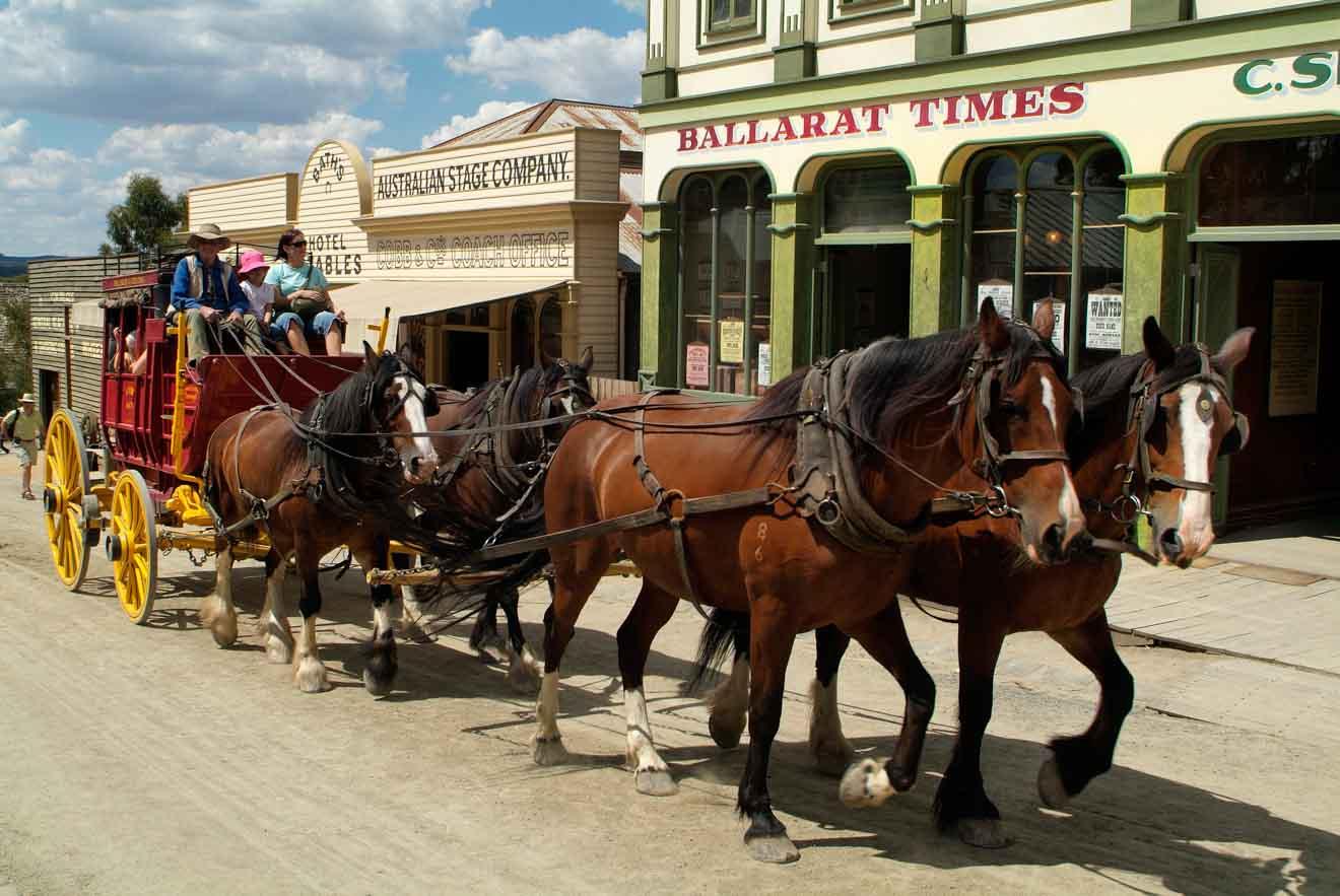 caballos para hacer con niños en ballarat