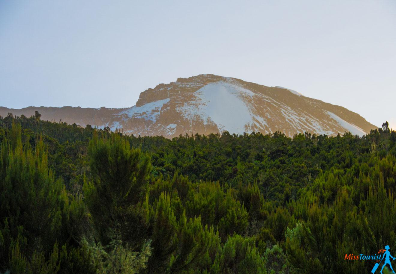 Escalar el Kilimanjaro: 7 cosas que debe saber antes de ir 10