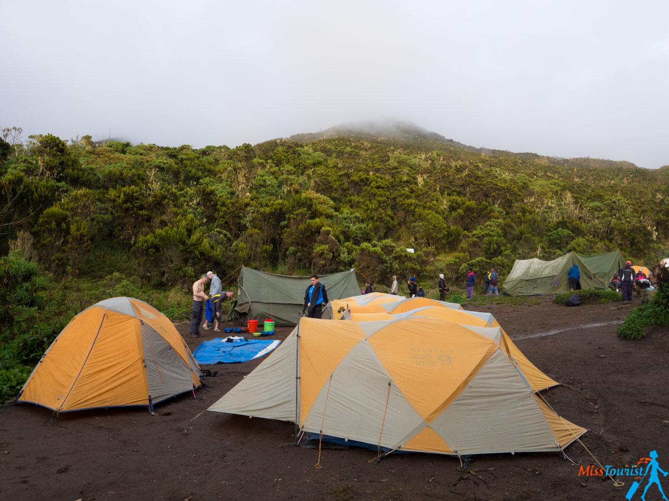 Escalar el Kilimanjaro: 7 cosas que debe saber antes de ir 9