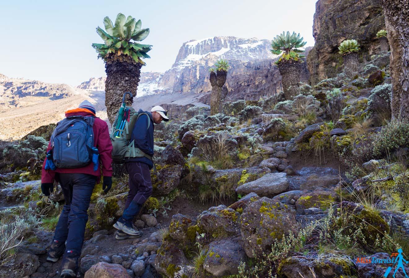 Escalade du Kilimandjaro - 7 choses à savoir avant de partir 28