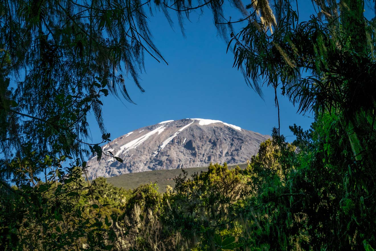 Climbing Kilimanjaro – 7 Things You Should Know Before You Go 55