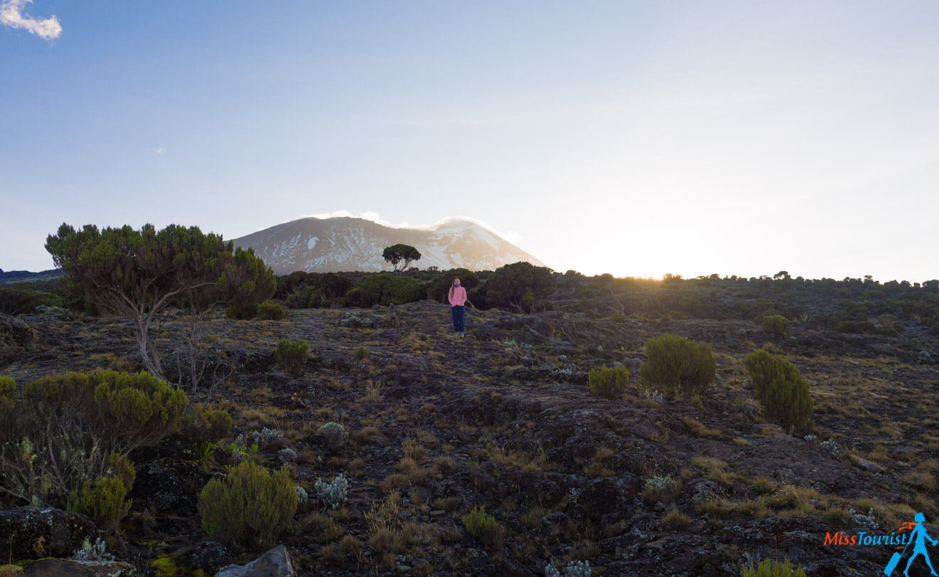 Climbing Kilimanjaro – 7 Things You Should Know Before You Go 19